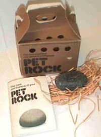 Pet Rock - Seriously will the person who thought of this please stand up! One of the craziest toys from the 70s