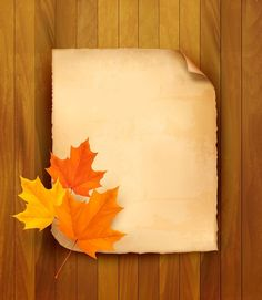 Buy Sheet of Paper with Autumn Leaves by almoond on GraphicRiver. Sheet of paper with autumn leaves on wooden background. Fully editable, vector objects separated and grouped,.