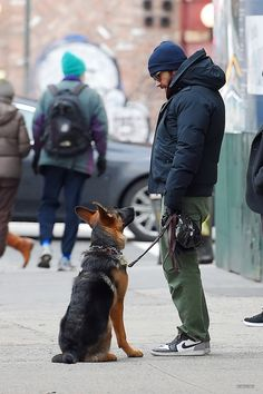Jake Gyllenhaal with Leo, 2015 - Walking His Dog In New York City