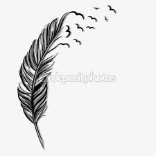 Resultado de imagen para ilustraciones de plumas