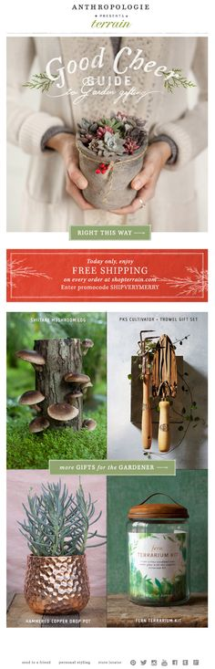Anthropologie Email