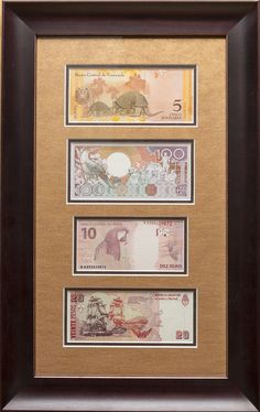 South American Framed banknotes.  We framed the set emphasizing the lush orange and brown colors, highlighting the warm and exotic imagery of the notes.