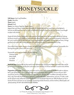 Herbal Medicine Magical and Medicinal uses of Honeysuckle. Free BOS page! Healing Herbs, Medicinal Plants, Natural Healing, Natural Herbs, Healing Stones, Magic Herbs, Herbal Magic, Plant Magic, Natural Medicine