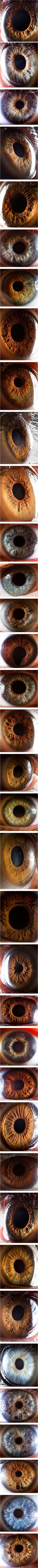 Suren Manvelyan - macro photography of human eyes