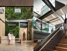 Solar-powered hospital in New Zealand has a welcoming environment filled with natural light and large green wall!