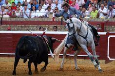 #OJOALDATO Promedio de orejas por tarde esta temporada: Hermoso de Mendoza (1.73 Orejas); Sebastián Castella (0.69 orejas) José María Manzanares (0.65)... Los tres torearán mañana en Albacete... ¡Entradas disponibles! http://ow.ly/dAEsV