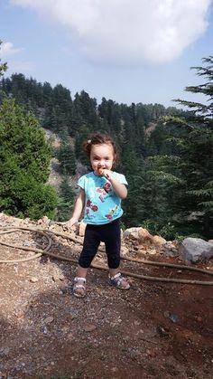 kız kardeşim ; Bayan Orman Prensesi Elif