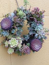 Living Wreath  How to make a living wreath with succulents.  This would be beautiful on the front door during the summer or for a grave site (sprinklers should keep it well watered).  I have also seen it done with regular flowers too.  Has a video with instrctions.