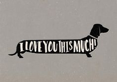 Quirky colourful dachshund sausage dog 'I Love You This