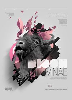Bovine Series | Designer: Aldo Pulella (links below)