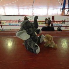 #tdrvolley12 Sergio ha trovato un amico!