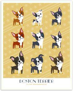 BOSTON TERRIERS art print by doggiedrawings on Etsy