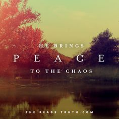 """Day 5 of the study """"In Everything, Give Thanks"""" from the devotional community She Reads Truth   Give Thanks In Stress"""