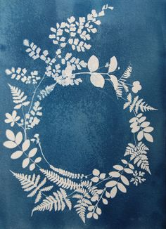 Cyanotypie - Cyanotype - Anna Maria Bellmann