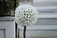 στολισμός γάμου με βασιλικό Dandelion, Crochet Hats, Flowers, Plants, Knitting Hats, Dandelions, Plant, Taraxacum Officinale, Royal Icing Flowers