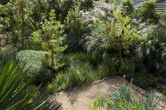 Urban bush setting - Peter Fudge Gardens