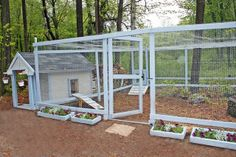 Chicken Coop & Run. Just the picture, but good inspiration.