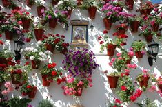 Patios con olor a azahar.- Festival de los Patios de Córdoba
