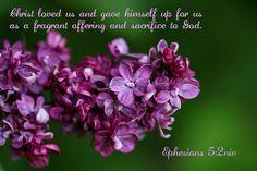 Ephesians 5:2 niv Christ loved us..., via Flickr.
