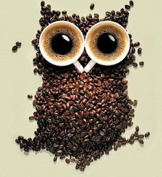 One of my favorite images, I like the use of coffee beans so I think this images is extremely creative and very unique in how the coffee beans build the image of an owl and the coffee cups represent the eyes. Owl Coffee, I Love Coffee, Coffee Art, Best Coffee, Coffee Break, Coffee Shop, Coffee Cups, Morning Coffee, Drink Coffee