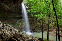 Bingham Hollow Falls-Arkansas  Ozark National Forest near the Mulberry River.  Tom Kennon, Photographer