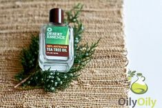 It is possible to use tea tree oil as yeast infection treatment. Although the application of tea tree oil for yeast infection may ease itching and kill excess Yeast Infection No More, Yeast Infection Treatment, Essential Oils For Rosacea, Essential Oil Uses, Rosacea Remedies, Natural Remedies, Psoriasis Cure, Psoriasis Symptoms, Dashboards
