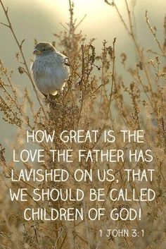 ~ How great is the love of the Father ~