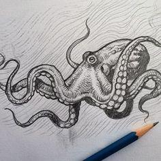 octopus drawing tattoo - Recherche Google