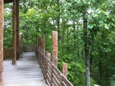 7 Epic Hiking Spots Around Nashville Are Completely Out Of This World 7 Wanderungen rund um Nashville Beaman Park Nashville Hiking, Nashville Vacation, Tennessee Vacation, Nashville Tennessee, Vacation Trips, Dream Vacations, Vacation Spots, Tennessee Hiking, Visit Tennessee