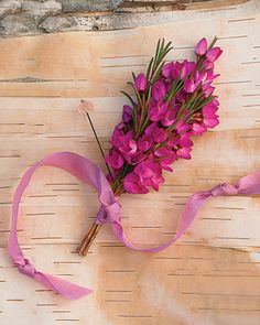 This one matches our wedding colors best. Hot Pink Boutonniere Boronia branches knotted in a length of vintage ribbon. Pink Boutonniere, Groomsmen Boutonniere, Groom And Groomsmen, Boutonnieres, Groom Attire, Fuschia Wedding, Floral Wedding, Wedding Flowers, Wedding Colors