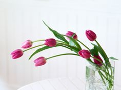 flower wallpaper download free