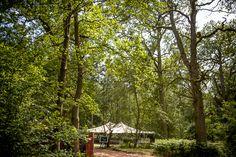 Wasing Park Woods by Matt Parry Photography, styling by Pocketful of Dreams #weddingvenue #woodland wedding