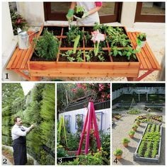 1. Not much room to garden? That's ok with this organic gardening table from Brookstone.  2. A wall of herbs at the Atlanta Botanical Garden. This is our most popular pin!  3. Add color to your vegetable garden using trellises. 4. Vegetable Garden Design from Susan Cohen Gardens.