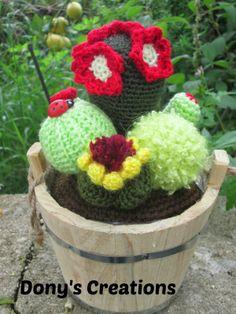 piante grasse uncinetto on Pinterest  Crochet Cactus, Cacti and Amig…