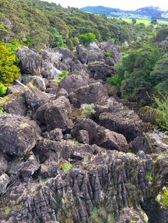 Wairere Boulders near the Bay of Islands - Viewing Platform
