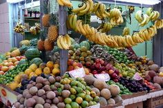 Outdoor Adventures Puerto Rico   ... Fruit, Vegetables and Shopping   Puerto Rico Day Trips Travel Guide