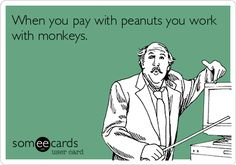 When you pay with peanuts you work with monkeys.