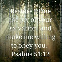 Restore Me With Your Joyful Salvation  www.stevewiersum.com