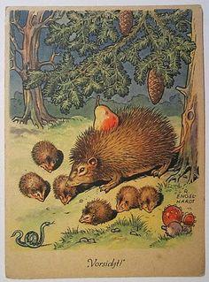 A Polar Bear's Tale:  'Be careful!' ...and a pear... Vintage postcard by R. Engelhardt, ca. 1945