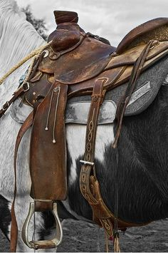 Saddle….this looks used and worn and is probably one of the BEST saddles ever.