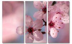 Roze bloesem schilderij | Bloemen schilderijen | Canvas Fotokunst