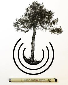 One of my new favorite trees to draw. Maritime Pine. . Also just added 13 new…
