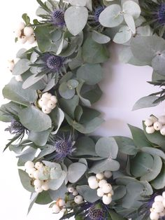 Snowberries and thistle