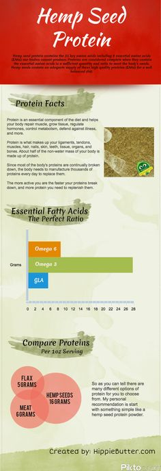 What You Need To Know About Hemp Seed Protein