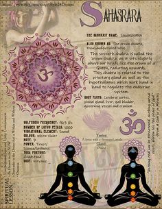 he Seventh Chakra (Sahasrara / Crown Chakra / thousand-petalled lotus) Chakra Heilung, Crown Chakra, Chakra Books, Alchemy, Les Chakras, Chakra Balancing, Holistic Healing, Book Of Shadows, Queen