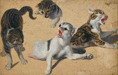 Alexandre-François Desportes - Study of Four Cats.