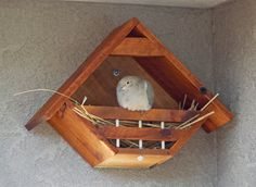 Lovey Dovey Original  Birdhouse Dovehouse by LoveyDoveyBirdhouses