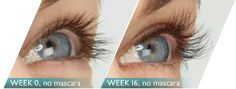Great lashes don't happen overnight. Stick with the product for up to 16 weeks for the full effect - you'll love it!