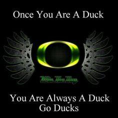 Oregon Ducks Wings | Oregon Duck Wings • by ZelnickDesigns on deviantART ☛ ... | Sports