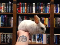 Bunny books tattoo via Tilly and her Books on tumblr
